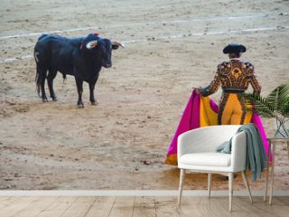 Spanish bullfighter in the bullring