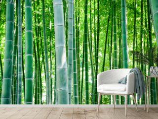 竹, 竹林