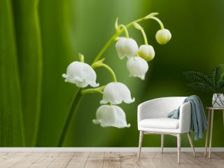 Forest lily of the valley natural light