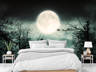 Night Forest With Moon  Background.