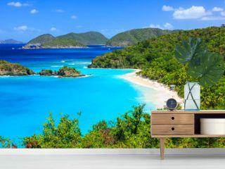 Trunk Bay on St John island, US Virgin Islands