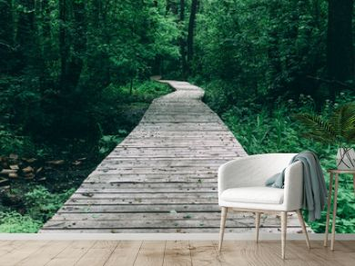 Wooden pathway among deciduous forest
