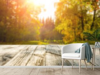 Wooden table in autumn forest at sunset