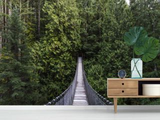 Suspension bridge in the forest. Evergreen. Vancouver nature. Pacific north west. Nature. Vancouver landscape.