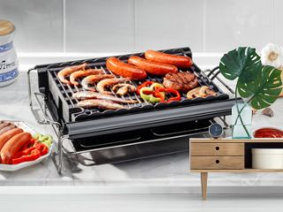 electric barbecue with fish and meat