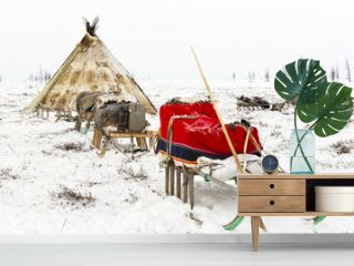 Camp of nomadic tribe in the polar tundra at a frosty day, chum, sled and other stuff