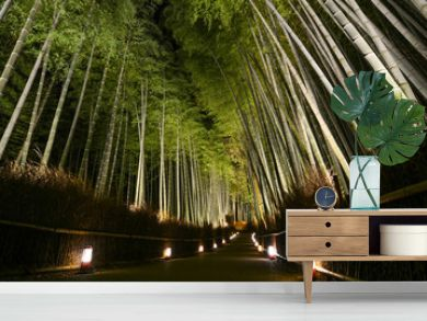 Path of lanterns in a bamboo forest for the night illumination festival in Kyoto, Japan