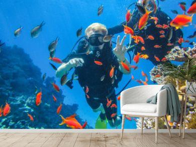 Красивый коралловый риф в Красном море. Дайвинг в Египте