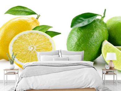 Fruit compositions with leaves isolated on white background. Ora