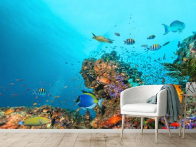 Beautiful coral reef with colored fish around