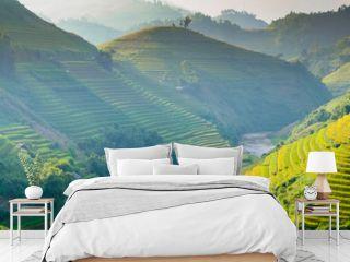 rice fields on terraces in Northwest of Vietnam.