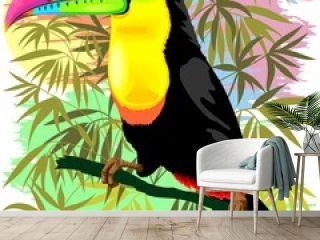 Toucan Wild Bird from Amazon Rainforest