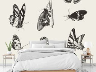 Collection of ink drawn butterflies
