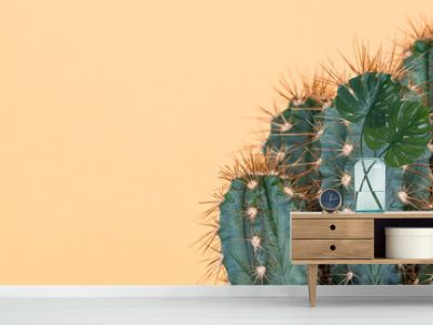 Cactus plant close up. Trendy yellow minimal background with cactus plant.