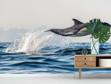A dolphin and a bird.