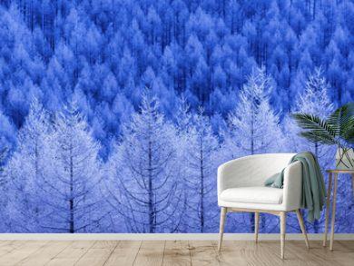 幻想的な冬の森 長野県霧ケ峰高原
