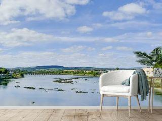 Panorama Shannon Thomond Weir Limerick