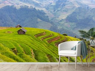 landscape rice fields on terraced of Mu Cang Chai, YenBai, Vietnam