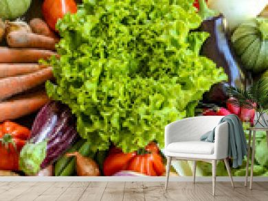 assortiment de légumes frais du potager