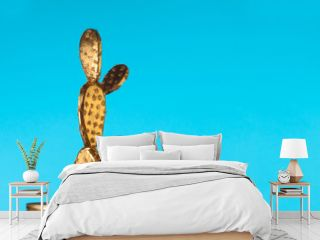 Golden cactus on blue background
