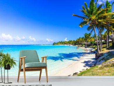 amazing tropical beach scenery. Mauritius island, Bel mare