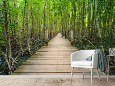 wooden bridge in a mangrove forest at Tung Prong Thong, Rayong, Thailand