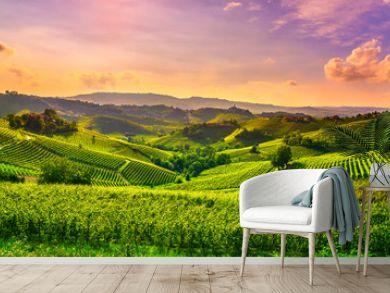 Langhe vineyards view, Castiglione Falletto and La Morra, Piedmont, Italy Europe.