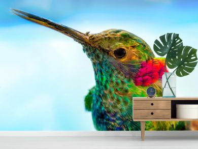 hummingbird close-up portrait, macro feather detail