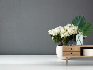 Azalea dwarf white plant in white pot