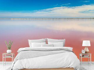 Real pink color salt lake and deep blue sky, minimalistic landscape