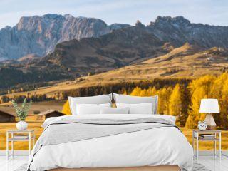 Alpe di Siusi at sunrise, Dolomites, South Tyrol, Italy