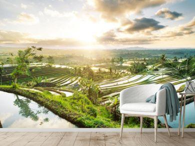 Beautiful sunrise over the Jatiluwih Rice Terraces in Bali, Indonesia.