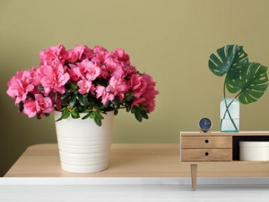 Pot with beautiful blooming azalea on table against color background