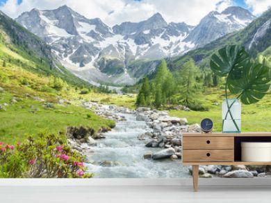 Panorama eines Wandergebietes in den Alpen mit Wildbach und Gletscher im Hintergrund