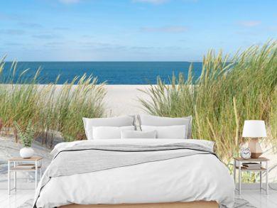 Dune with beach grass.