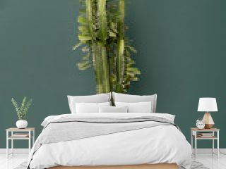 indoor plant in the interior - big euphorbia cactus on a wooden tabletop against the background of a green wall