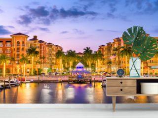 Naples, Florida, USA Skylinee