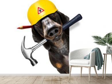 handyman worker hammer dog with helmet