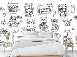 Crazy love cat lady shirt quote lettering