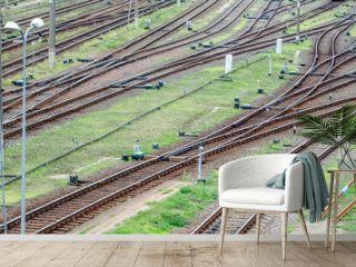 Railroad tracks  landscape