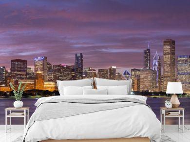 Chicago downtown buildings skyline panorama