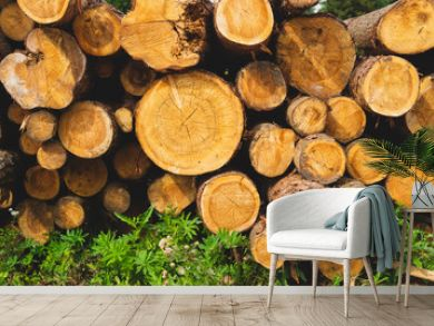 Stack of logs. natural wooden background with timber. log wall