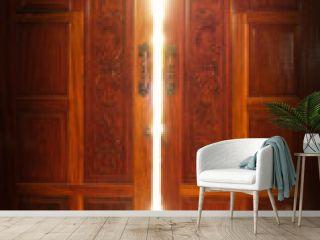 door light