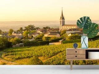Beaujolais village at morning