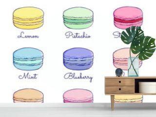 Set of colorful macarons with names of fillings. Delicious dessert food. Isolated vector illustration on white background. Hand drawn sketch. Сan be used for flyers, recipes , greeting cards, posters.