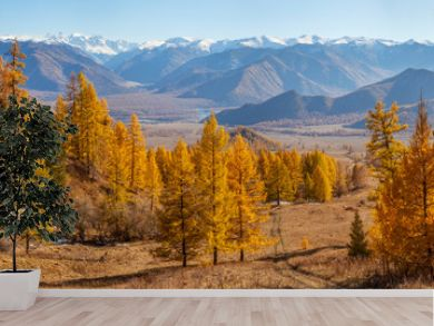 Picturesque mountain valley, panoramic autumn view