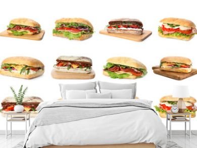 Set of delicious sandwiches on white background