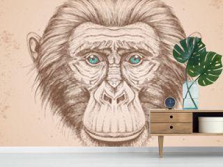 Hipster animal monkey. Hand drawing Muzzle of chimpanzee