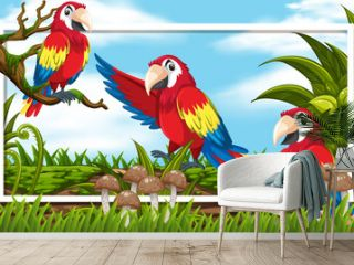 Frame design with three macaws in the woods background