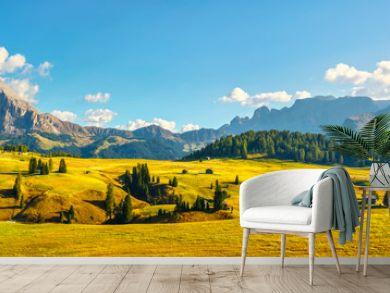 Alpe di Siusi or Seiser Alm and Sassolungo mountain, Dolomites Alps, Italy.